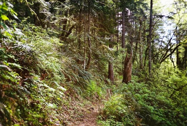 trails1.3